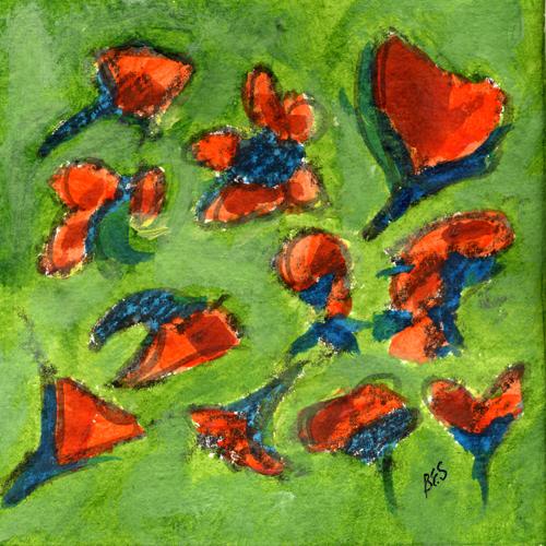 Bright Orange Poppies