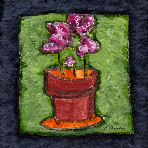 Hot Pink Geraniums