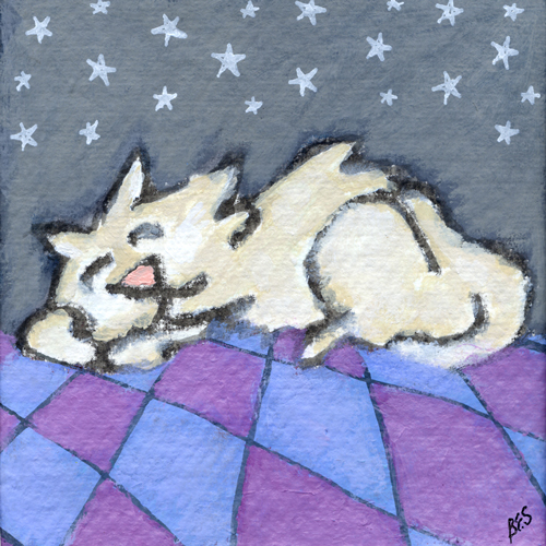 Kitty Starry Night