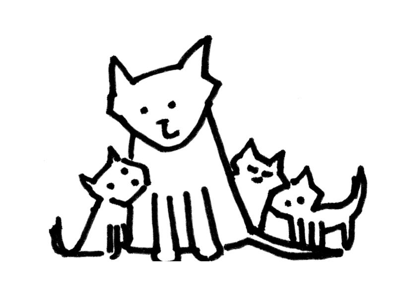 cat sketches bernadette artwork